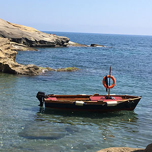 boat_tour